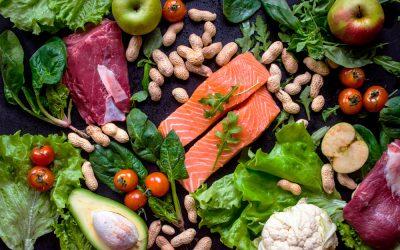 Plano Paleo: O que é? | Dieta Paleolitica